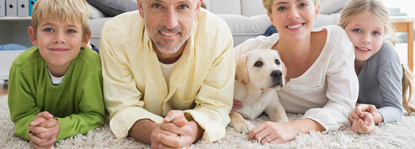 Carpet Cleaning Vancouver - Upholstery, Mattress, Office and Pet Accident Removal Services Vancouver, New Westminster & Surrey