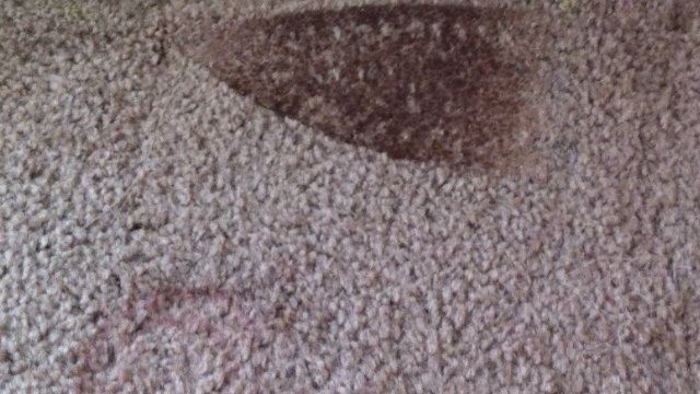 How To Remove Burn Marks From Carpet